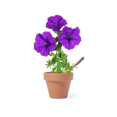 Doniczka do kwiatów, 5-8 nasion petunii i ziemia
